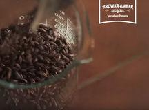 Kampania wideo dla Browaru Amber